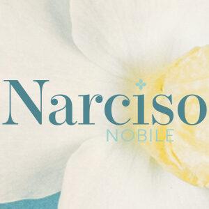 Narciso Nobile